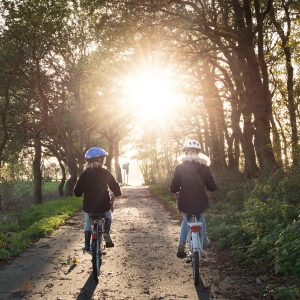 rowery-2021-zegzre-rowery