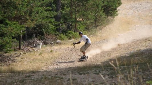 zieleniec-2021-mountainboard-grasski-mountainboard